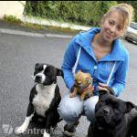 Educatrice et comportementaliste canin